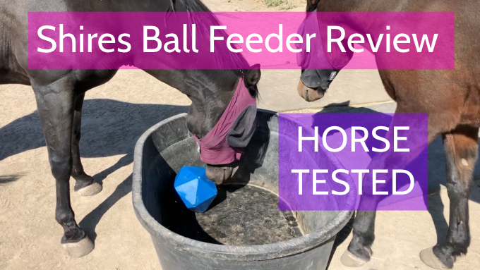 Ginny's Horse Product Review -
